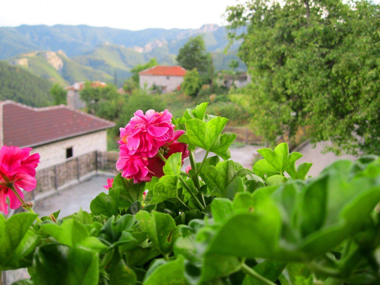 Къща в Родопите, село Врата