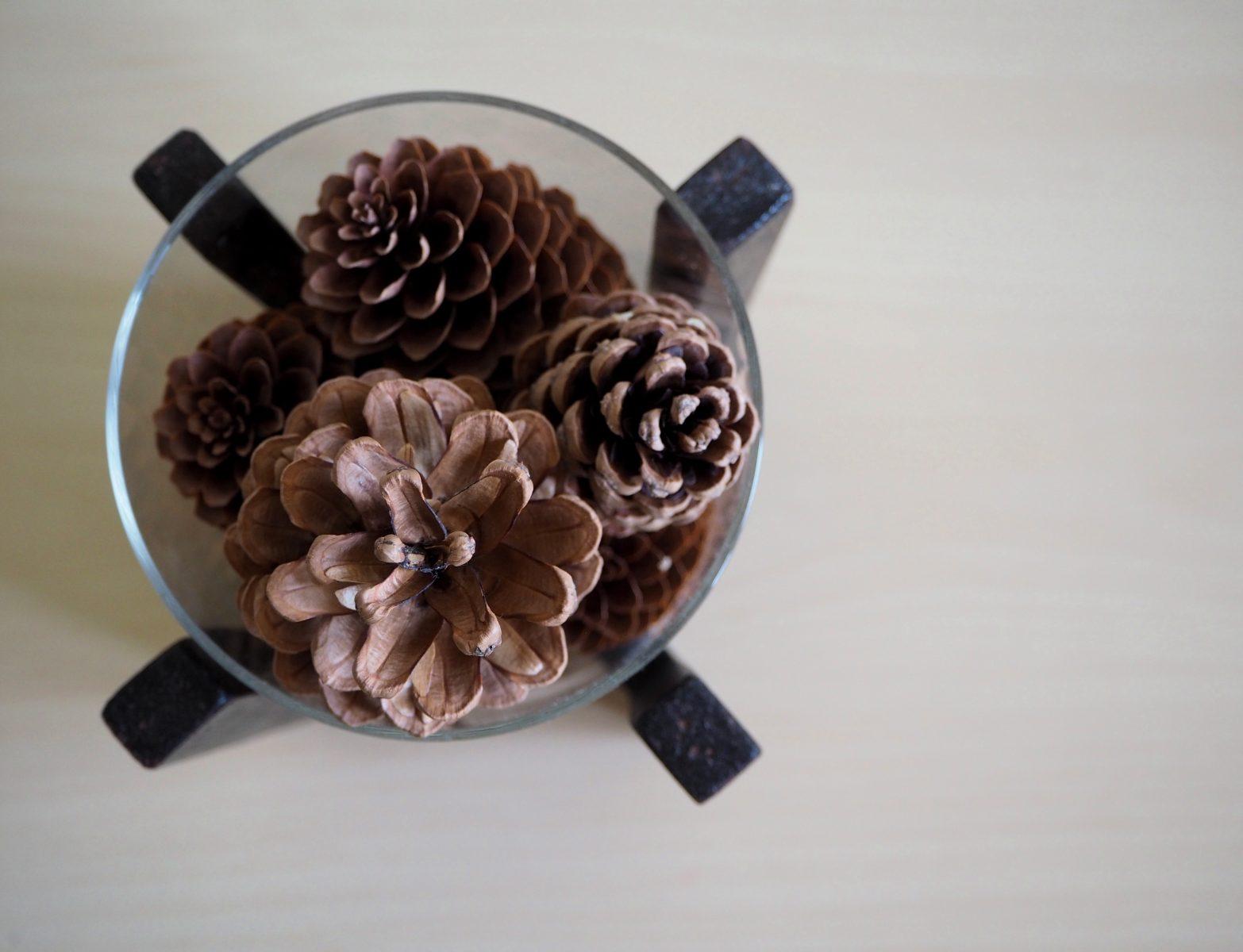 Природата вкъщи: декорация от шишарки